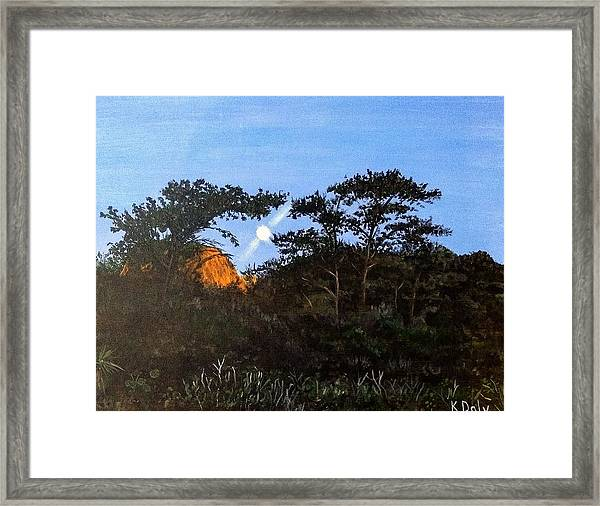Framed Print featuring the painting Torrey Pines In The Morning by Kevin Daly