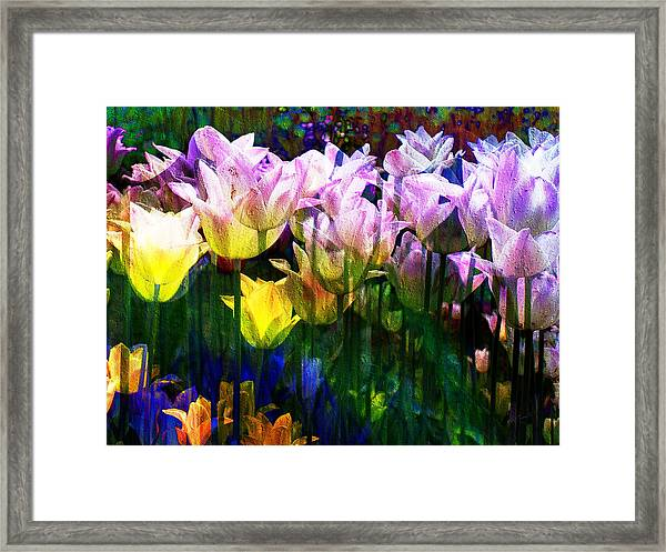 Totally Tulips Framed Print
