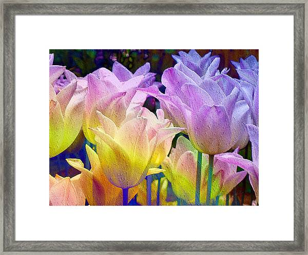 Totally Tulips Two Framed Print