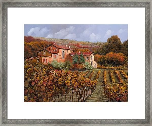 tra le vigne a Montalcino Framed Print