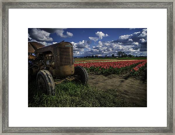 Tractor N' Tulips Framed Print