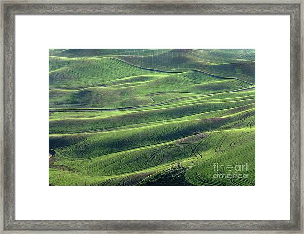 Tractor Tracks Agriculture Art By Kaylyn Franks Framed Print