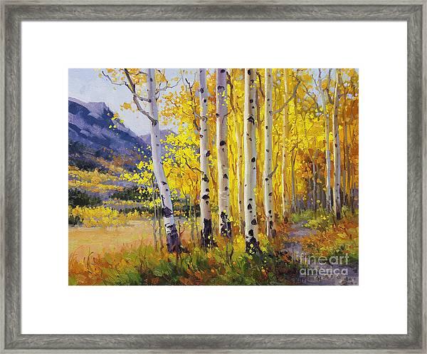 Trail Through Golden Aspen  Framed Print