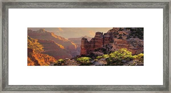 Trailside Framed Print
