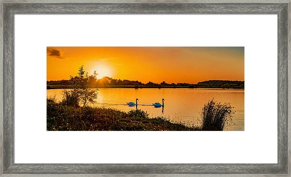 Framed Print featuring the photograph Tranquility by Nick Bywater