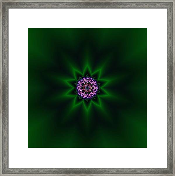Framed Print featuring the digital art Transition Flower 10 by Robert Thalmeier