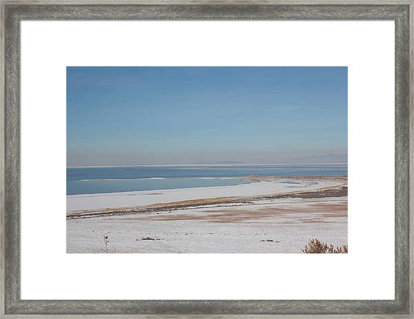 Framed Print featuring the pyrography Transition by Michael Lucarelli