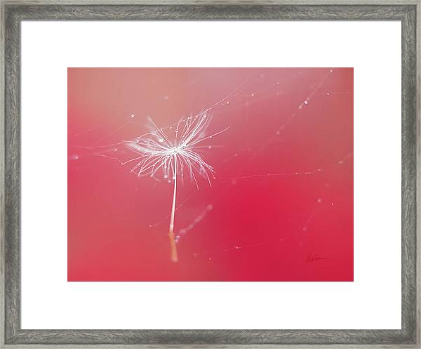 Trapped In Vain Framed Print