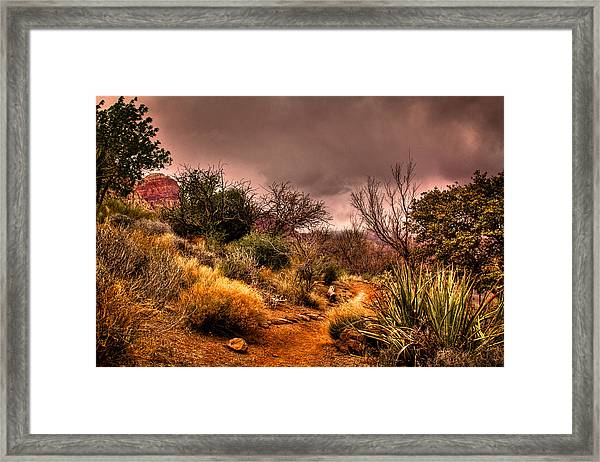 Traveling The Trail At Red Rocks Canyon Framed Print