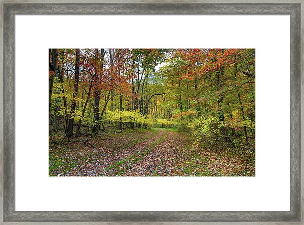 Travels Through Autumn Framed Print