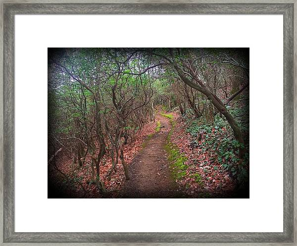 Tray Mountain Framed Print