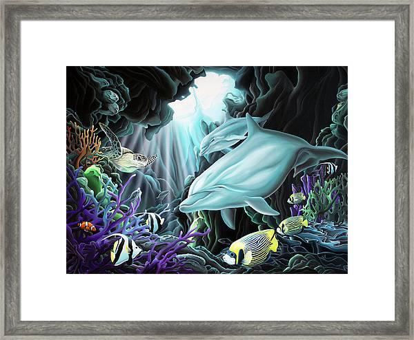 Treasure Hunter Framed Print