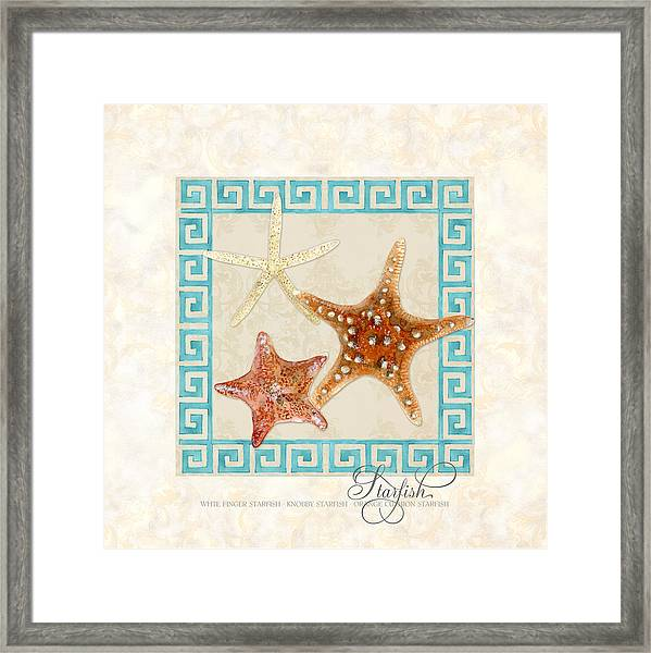 Treasures From The Sea - Starfish Trio Framed Print