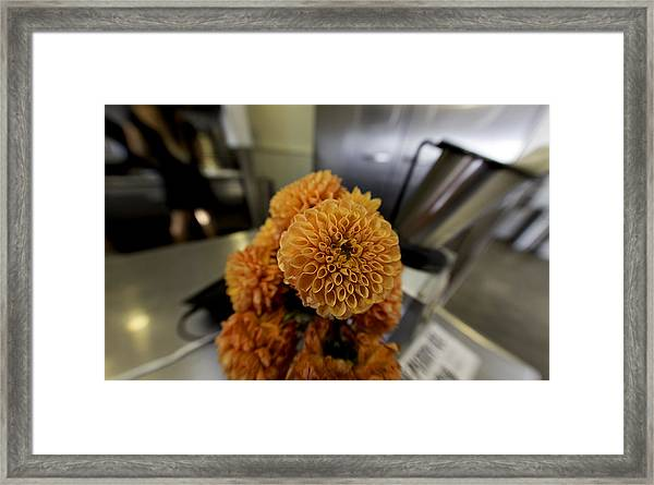 Treats At The Ice Cream Parlor Framed Print