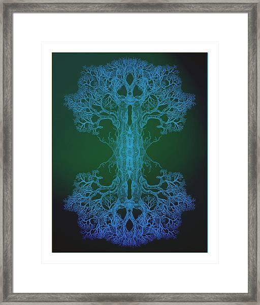 Tree 13 Hybrid 2 Framed Print