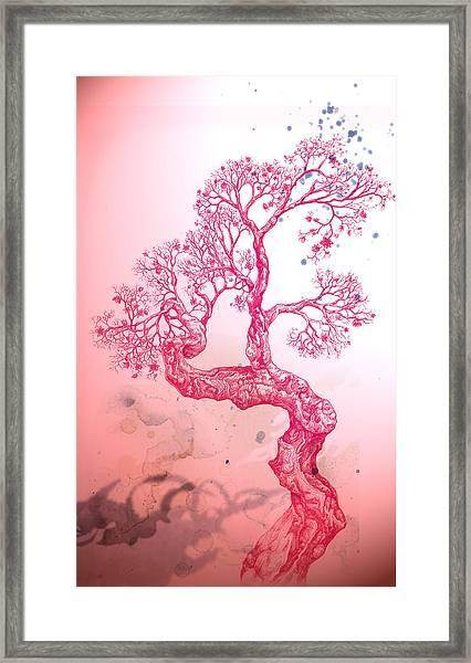 Tree 14 Hybrid 1 Framed Print