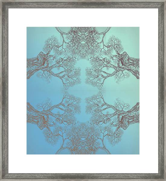 Tree 20 Hybrid 3 Framed Print