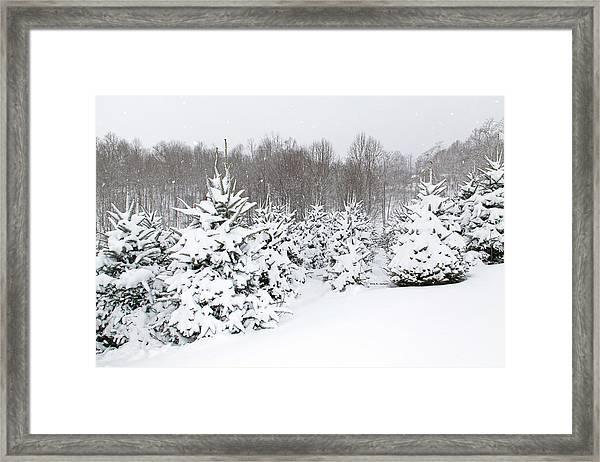 Fraser Snow Framed Print