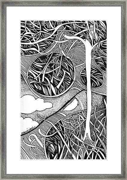 Tree In Metamorphosis Framed Print