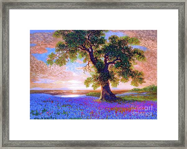 Bluebonnets Framed Print
