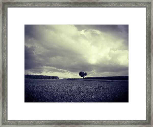 Tree Poem Framed Print