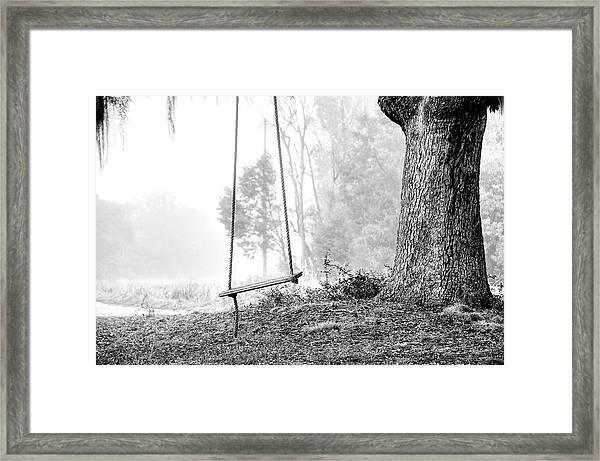 Tree Swing Framed Print
