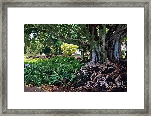 Tree With Roots Framed Print