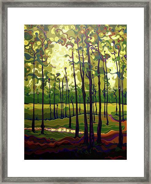 Treecentric Summer Glow Framed Print
