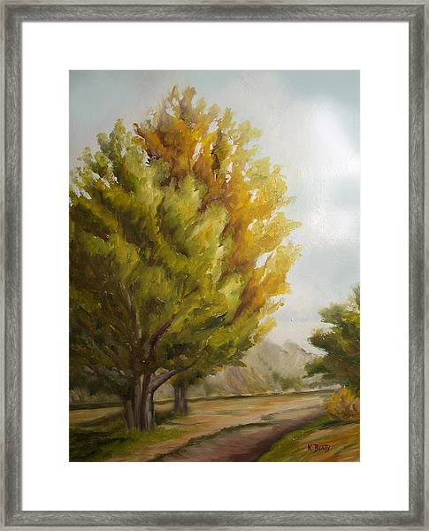 Trees In Boulder Framed Print