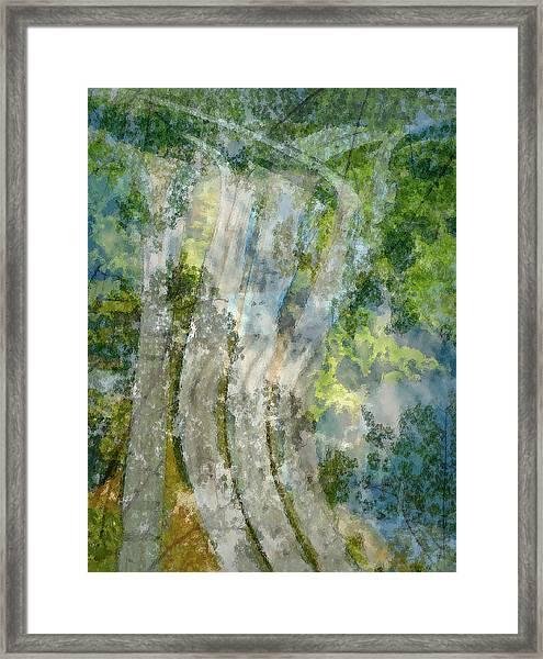 Trees Over Highway Framed Print
