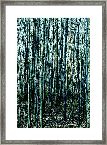 Treez Cyan Framed Print
