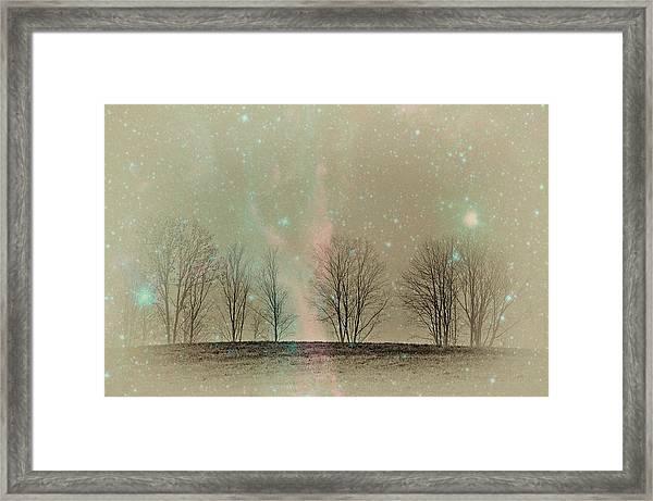 Tress In Starlight Framed Print