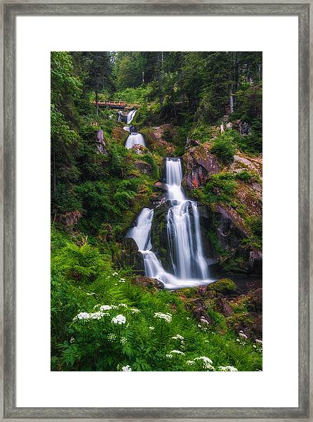 Triberg Waterfalls Framed Print