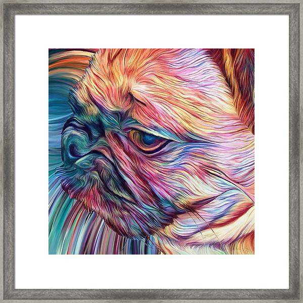 Trippy Arabella Framed Print