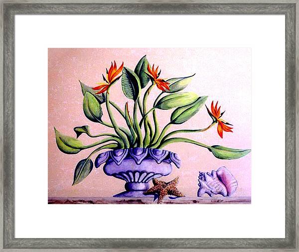Trompe L'oeil  Birds Of Paradise Framed Print