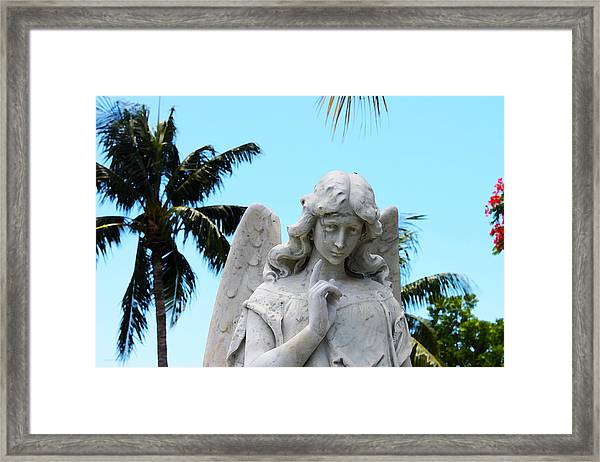 Tropical Angel With Tear Framed Print