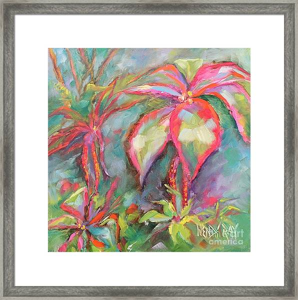 Tropical Beauty Framed Print
