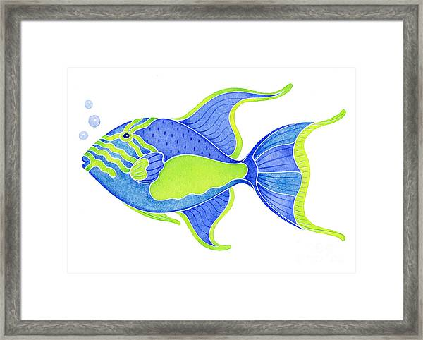 Tropical Blue Triggerfish Framed Print