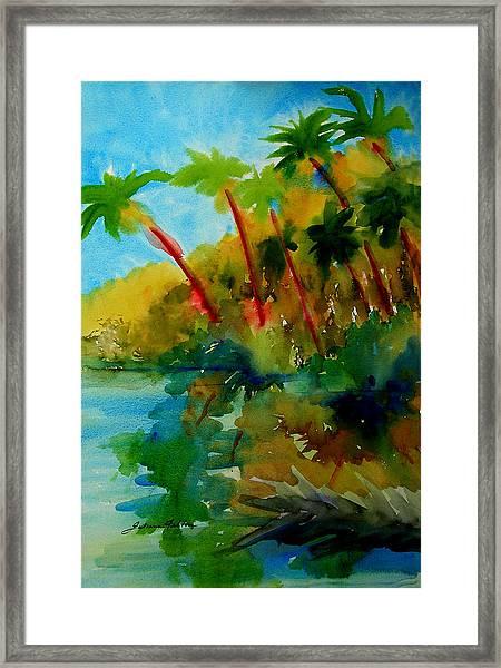 Tropical Canal Framed Print