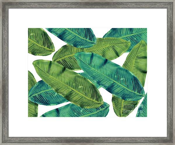 Tropical Colors 2 Framed Print
