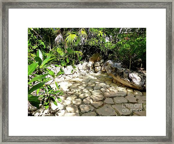 Tropical Hiding Spot Framed Print