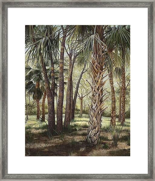Tropical Trail's End Framed Print