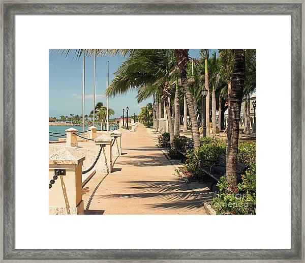 Tropical Walkway Framed Print