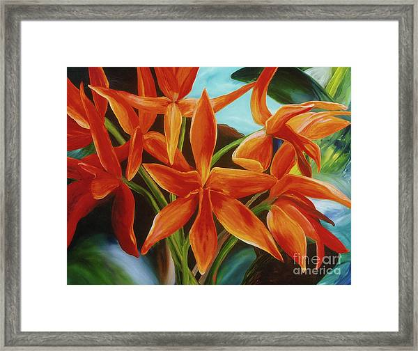 Tropicana Framed Print