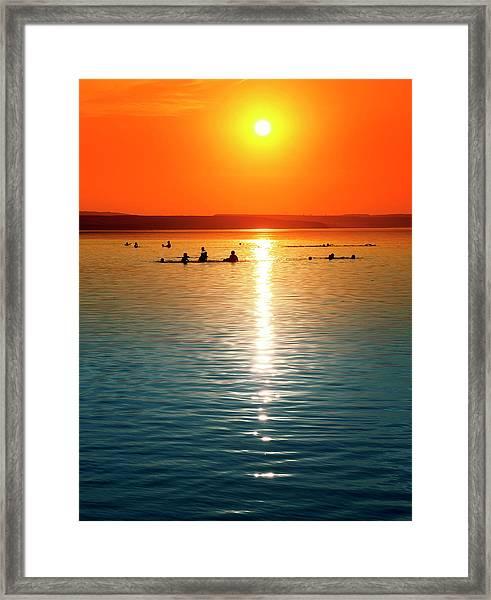 Tropicana Swimming Framed Print