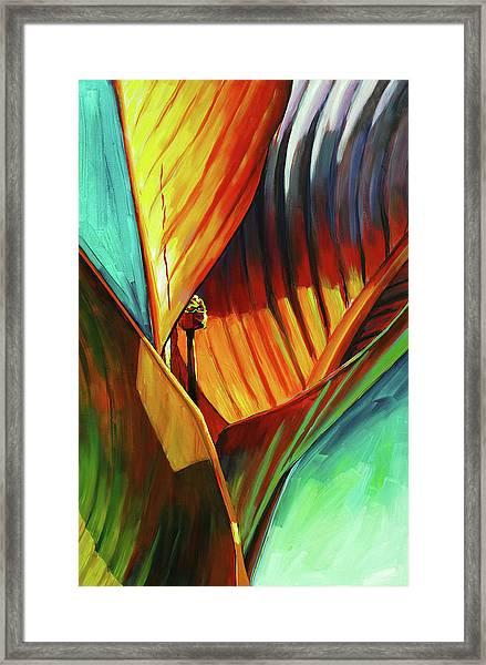 Tropicanna Canna Framed Print