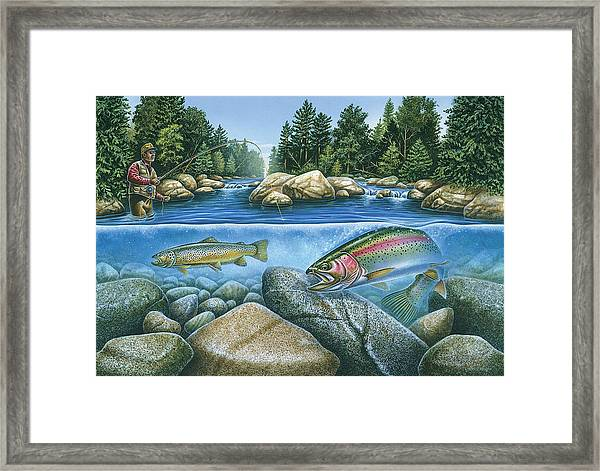 Trout View Framed Print