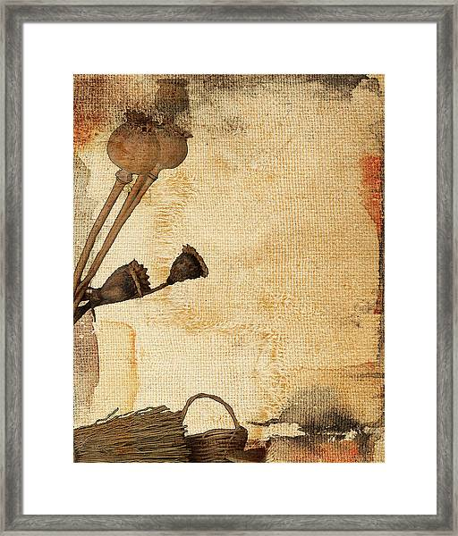 Truth In Raw Simplicity I Framed Print