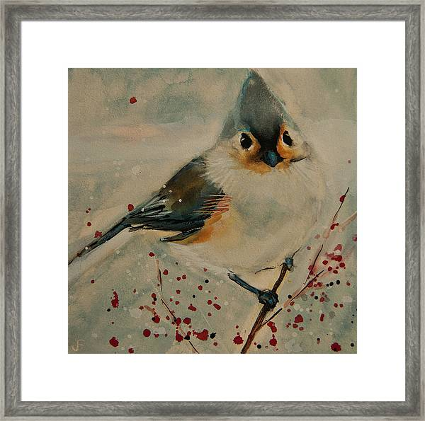 Tufted Blue Titmouse Framed Print
