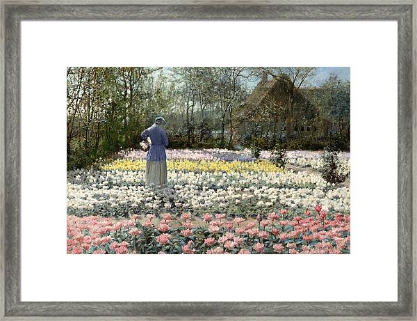 Framed Print featuring the painting Tulip Culture by George Hitchcock